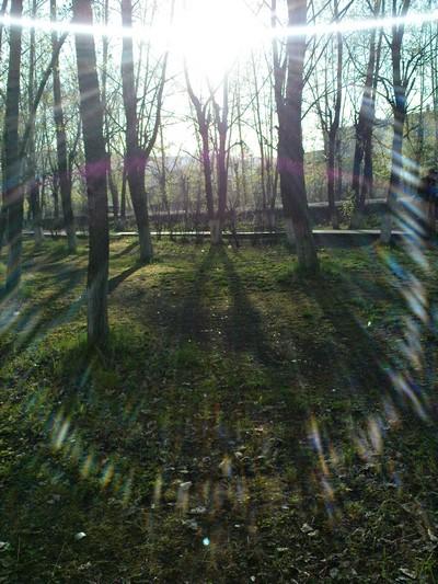 весенние согревающие лучи
